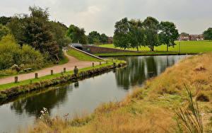 Фотографии Англия Реки Трава Деревья Pelsall Природа
