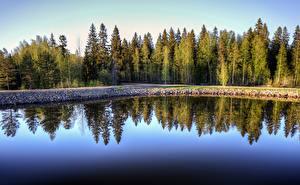 Фото Финляндия Лес Отражение Saimaa Canal Природа