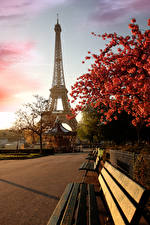 Фотографии Франция Париж Эйфелева башня Сакуры