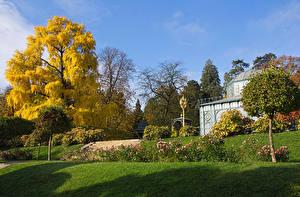 Фотографии Германия Парк Осенние Деревьев Кусты Траве Wilhelma zoological-botanical garden Stuttgart Природа
