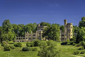 Обои Германия Потсдам Дворца Кустов Дерево Babelsberg Palace город