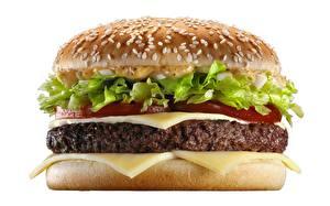 Фотографии Гамбургер Вблизи Котлета Сыры Белый фон
