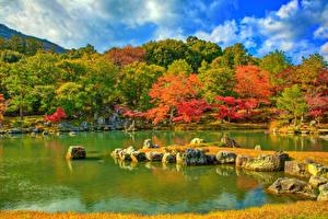 Картинка Япония Киото Парк Пруд Осень Камни HDRI Деревья Tenryuji Temple park