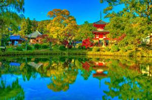 Картинка Япония Киото Парки Храм Пагоды Пруд Осень Кусты Деревья Daikaku-ji Природа