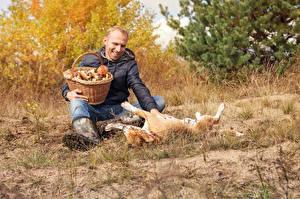 Фотографии Мужчины Грибы Собаки Корзина Сидящие Улыбка Играет