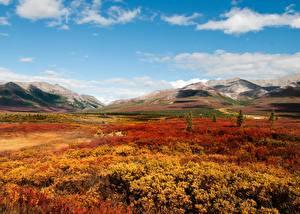 Картинка Горы Осень Парк Штаты Аляска Denali National Park Природа