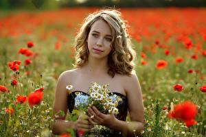 Фотографии Маки Ромашки Размытый фон Русые девушка
