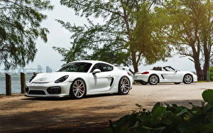 Обои Porsche Белый William Stern cayman GT4 машина