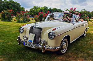 Фотографии Ретро Mercedes-Benz Кабриолета Металлик 1960 220 SE Ponton Convertible автомобиль