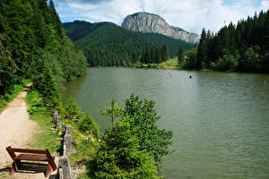 Обои Румыния Горы Леса Озеро Скамейка Red Lake Transylvania