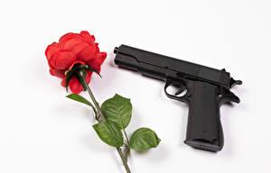 Обои Розы Пистолеты Белый фон Красная