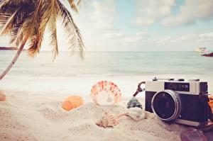 Картинка Лето Ракушки Море Пляж Песок Фотокамера