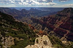 Фотографии Америка Зайон национальнай парк Каньона Скала Utah Природа