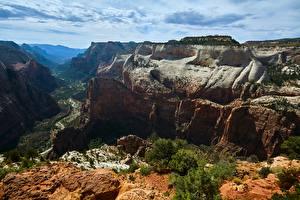 Фото Америка Зайон национальнай парк Скале Каньона Utah Природа