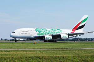 Обои Эйрбас Самолеты Пассажирские Самолеты Траве A380