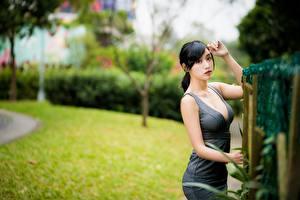 Фото Азиатка Боке Позирует Платья Вырез на платье Брюнетки Взгляд молодая женщина