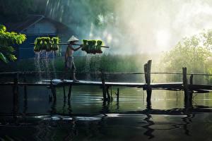 Картинки Азиатки Мост Мужчины Озеро Шляпы Шорт Тумане Работает Природа