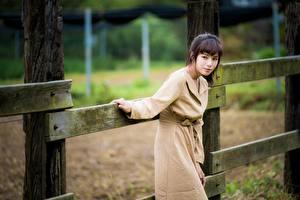 Обои Азиатки Забор Позирует Пальто Девушки