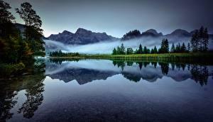 Фотографии Австрия Гора Озеро Утро Туман Альп Lake Almsee Природа