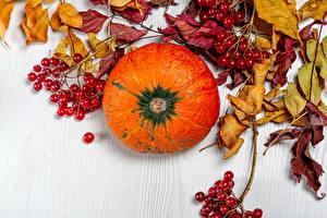Обои Осенние Тыква Ягоды Листва Пища