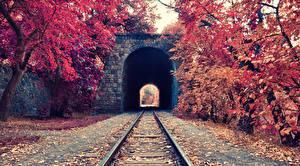 Фото Осенние Железные дороги Туннель Рельсах Природа