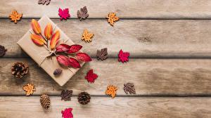 Обои Осенние Доски Подарок Листва Шишка Шаблон поздравительной открытки Природа
