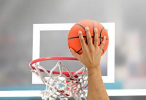 Фото Баскетбол Рука Мяч Размытый фон