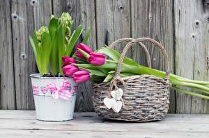 Картинка Букеты Тюльпаны Корзина Серце Доски Ведро Цветы