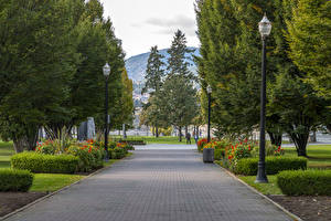Картинка Канада Парк Уличные фонари Кусты Деревья Kelowna Природа