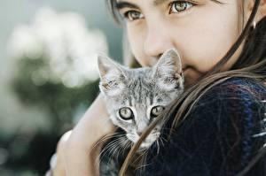 Фотографии Коты Миленькие Смотрят Девочки Котята Дети