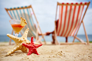 Фотография Коктейль Морские звезды Курорты Размытый фон Песок Пляжи Бокалы Лежаки Продукты питания