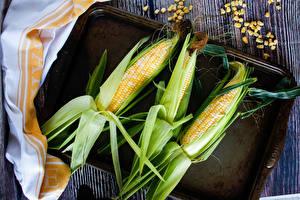 Фотографии Кукуруза Трое 3 Зерно Еда
