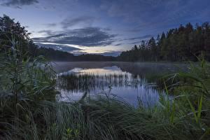 Картинки Вечер Озеро Норвегия Strengsdalsvannet Природа