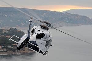 Картинки Вертолет Airbus Полет Белых Вид сзади H160 Авиация