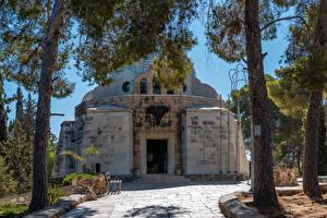 Фотографии Израиль Храмы Церковь Деревья Holy Land in Bethlehem