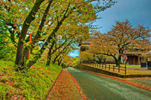 Картинка Япония Осень Замки Дороги HDR Деревьев Листва Kumamoto Castle