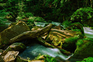 Обои Япония Леса Водопады Камень Мох Бревна Aomori Prefecture