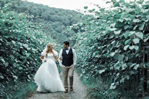 Картинка Мужчина Влюбленные пары Тропы Двое Невесты Платья Улыбка Жених Девушки