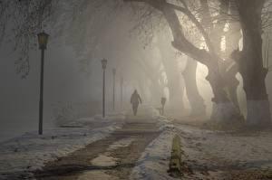 Фотографии Парк Тумана Уличные фонари Дерева Тропы Гуляет город