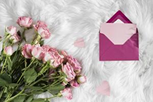 Картинка Роза Букеты Письмо Шаблон поздравительной открытки Конверт Цветы