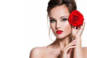 Фото Розы Белом фоне Макияж Лицо Фотомодель Взгляд Красивые девушка