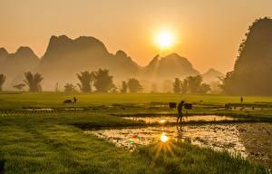 Обои для рабочего стола Рассвет и закат Поля Горы Азиаты Тумана Работают Природа