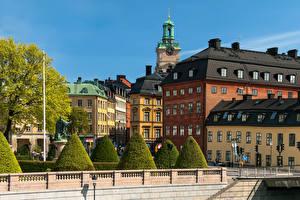 Фото Швеция Стокгольм Дома Кусты город