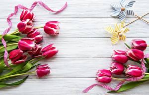 Фотографии Тюльпаны Доски Шаблон поздравительной открытки цветок