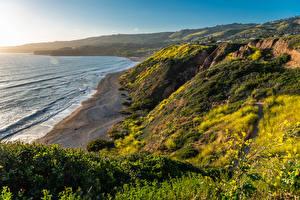 Картинка США Берег Океан Калифорнии Мох Скала