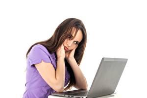 Картинки Белом фоне Шатенки Ноутбук Сидящие девушка