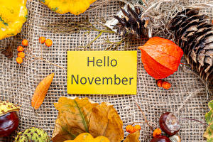 Обои Осень Ягоды Английский Шишка Лист Слова Physalis Hello November