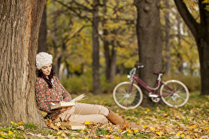 Картинка Осенние Шапки Сидя Ствол дерева Книги Боке город