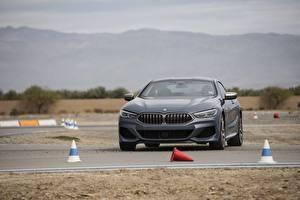 Фотографии BMW Серый 2018 8-Series 2019 M850i xDrive 8er G15 Автомобили