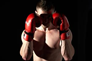 Фотография Бокс Мужчина На черном фоне Рука Перчатки спортивные